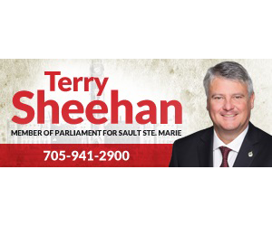 Terry Sheehan