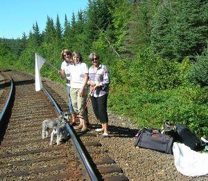 flagging down train