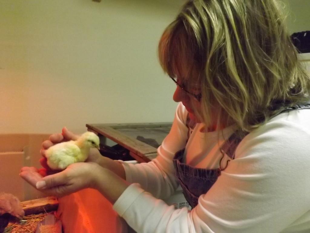 Eeeeee!! Baby chick!