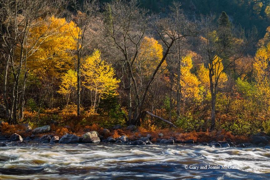 Agawa River Canyon102013-330