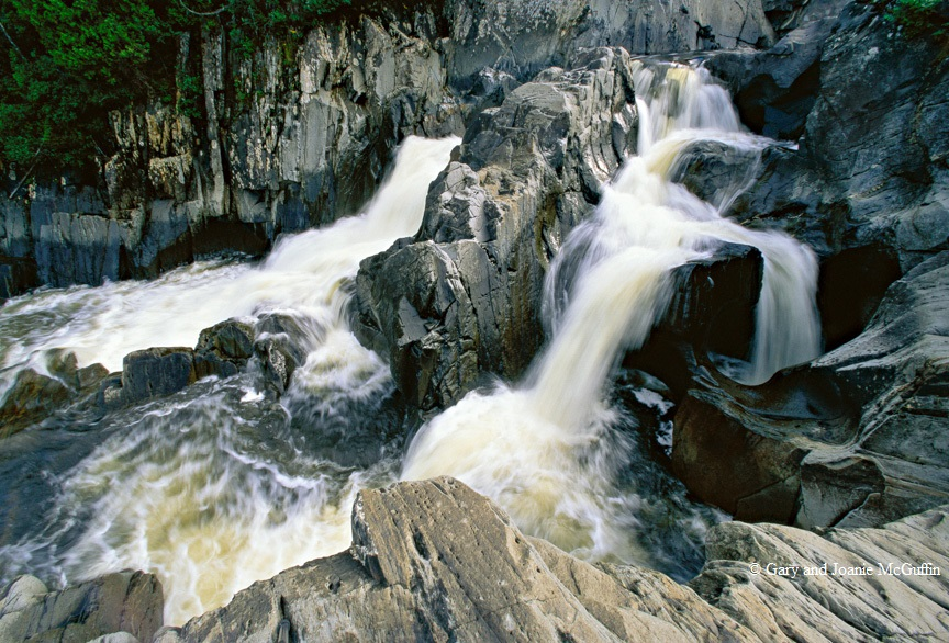Dog River Image29