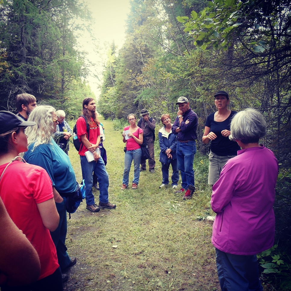 Karen Stephenson describing the nutritional value of edible wild plants during a hike in Thunder Bay. (photo courtesy of Ontario Nature)