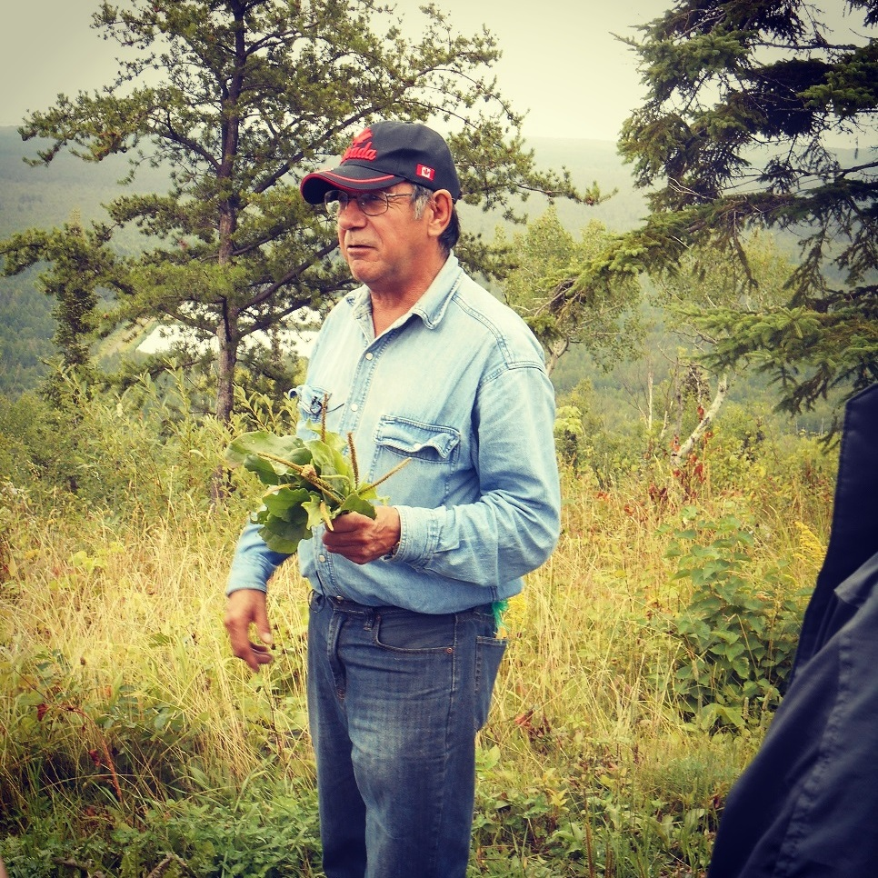 Traditional Elder Raphael Moses explaining the healing benefits of plantain during a walk on Mount McKay at the Fort William First Nation. (photo courtesy of Ontario Nature)