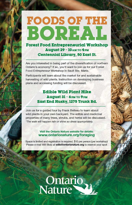 OntarioNature Foraging Workshops SSM