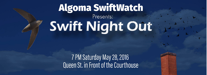 Swift Night Out is fast approaching! Everyone is free to come down and join us on May 28th as we watch our Chimney Swifts enter the roost! Entertainment, activities for families, food, and refreshments offered at the event!