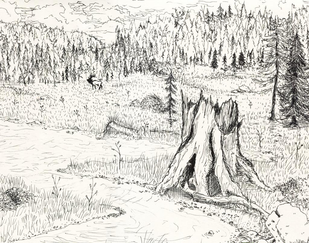 Illustration by Gabrielle Fogg.